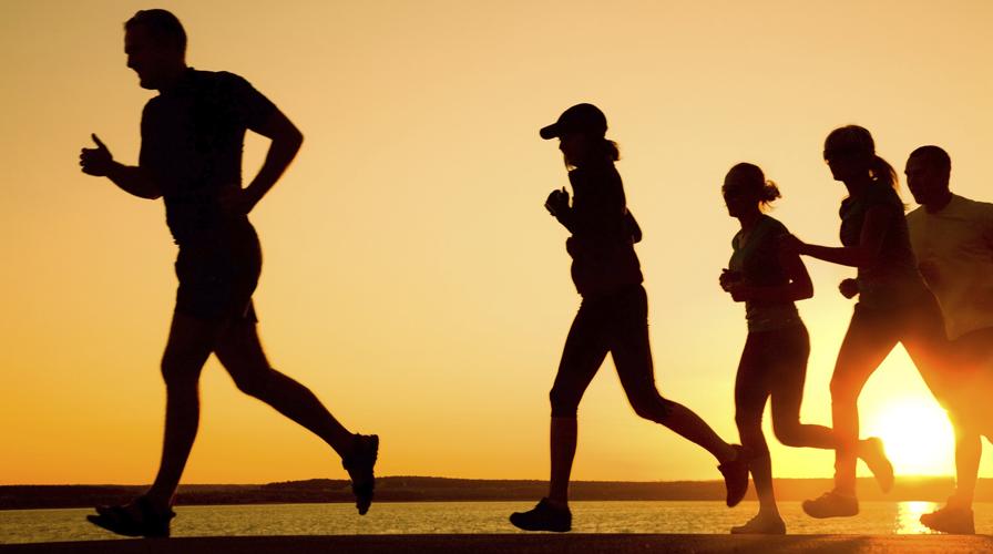 Resultado de imagem para fazendo exercicios