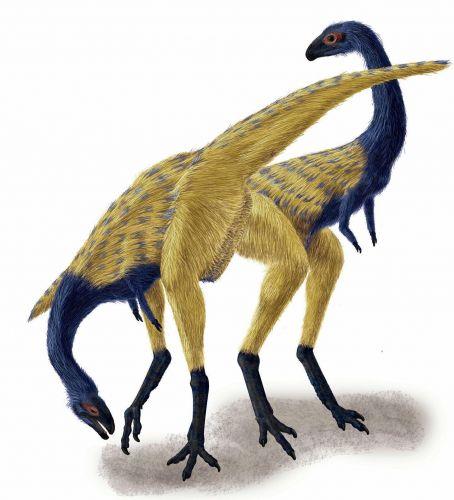 Dinossauro chinês 3