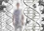 2003: Projeto Genoma Humano é finalizado