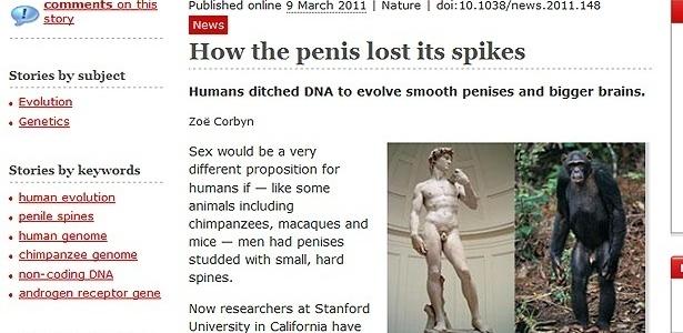 Na reprodução da notícia no site da Nature, fotos comparam estátua de Davi e um primata; <br>a legenda, bem-humorada, explica que falta algo da imagem da esquerda