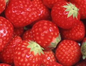 Uma dieta rica em morangos pode exercer um efeito benéfico na prevenção de doenças gástricas