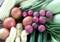 Apenas 17,7% dos brasileiros cumpre recomendação da OMS de comer cinco porções diárias de vegetais