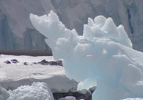 O bloco Wilkins, que fica no oeste da Península Antártica, está diminuindo de tamanho desde a década de 1990