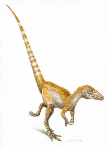 Cientistas descobrem cor de dinossauro