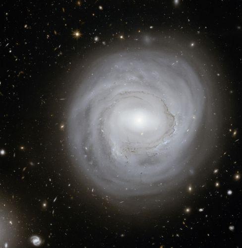 """Galáxia """"anêmica"""""""