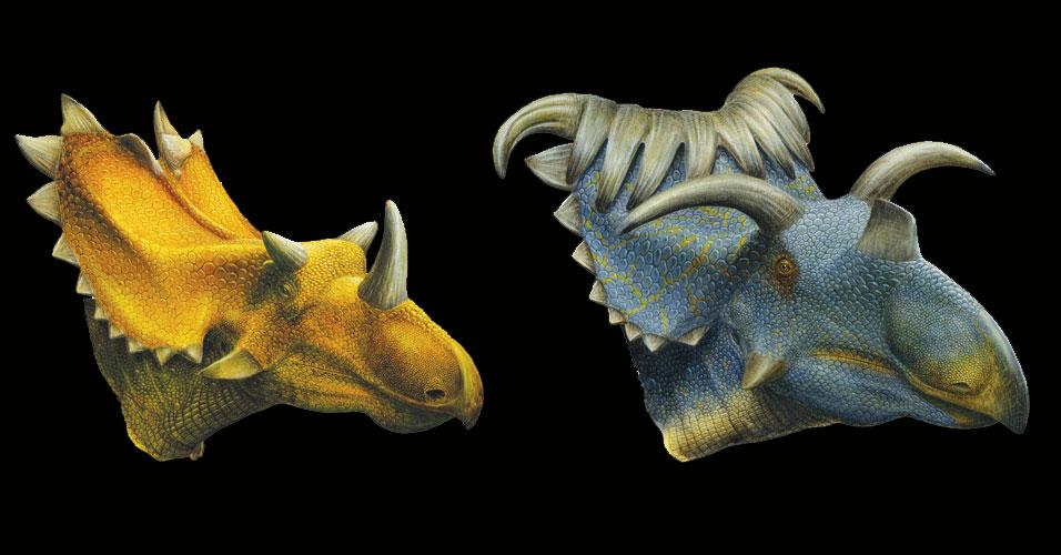 Dinossauros chifrudos