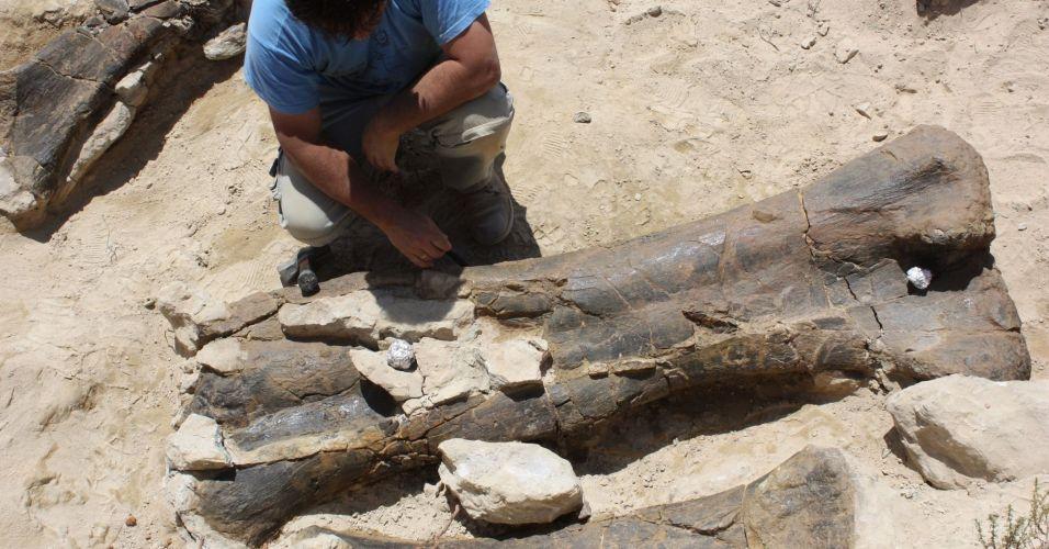 Dinossauro gigante na Europa