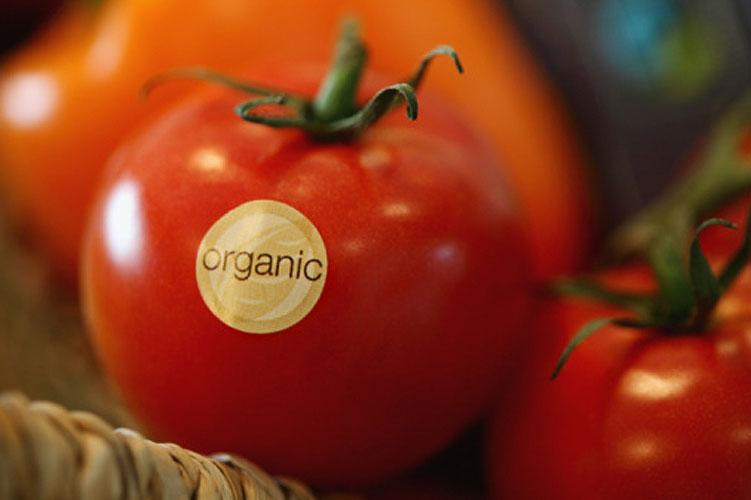 Orgânicos são menos calóricos?