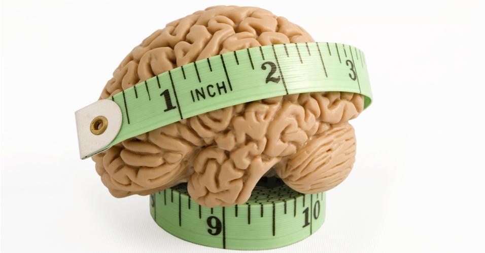 Dieta rica em gordura causa lesões no cérebro