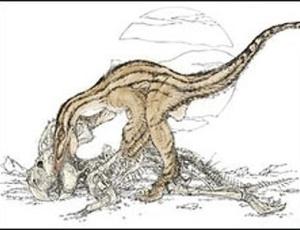 Fóssil mostra velociraptor comendo carcaça de dinossauro herbívoro