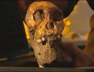 Crânio do Australopithecus sediba, encontrado em Malapa, África do Sul