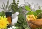 Anvisa quer valorizar fitoterápicos; produtos também oferecem riscos - Arte UOL