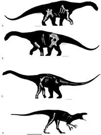 Arte T.Tischler /Australian age of dinosaurs